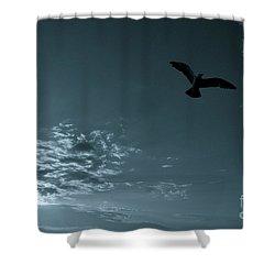 Soaring Shower Curtain by Valerie Rosen