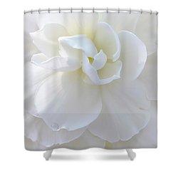 Soft Ivory Begonia Flower Shower Curtain by Jennie Marie Schell