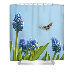 Something In The Air: Peacock Shower Curtain by John Edwards