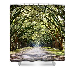 Southern Way Shower Curtain by Carol Groenen