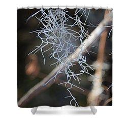 Spanish Moss Shower Curtain by Carol Groenen