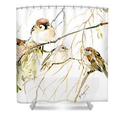 Sparrows Shower Curtain by Suren Nersisyan