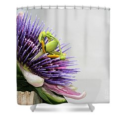 Spikey Passion Flower Shower Curtain by Sabrina L Ryan