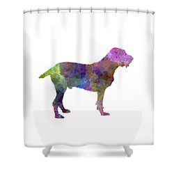 Spinone In Watercolor Shower Curtain by Pablo Romero