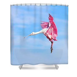 Spoonbill Ballet Shower Curtain by Mark Andrew Thomas