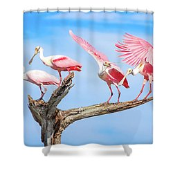 Spoonbill Party Shower Curtain by Mark Andrew Thomas