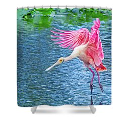 Spoonbill Splash Shower Curtain by Mark Andrew Thomas