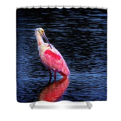 Spoonbill Sunset Shower Curtain by Mark Andrew Thomas