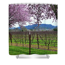 Spring Blossoms Near Calistoga Shower Curtain by Charlene Mitchell