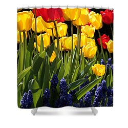 Spring Flowers Square Shower Curtain by Carol Groenen