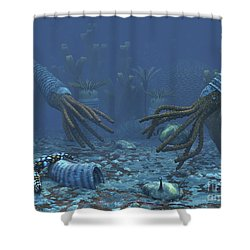 Squid-like Orthoceratites Attempt Shower Curtain by Walter Myers
