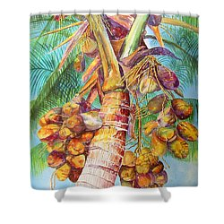 Squire's Coconuts Shower Curtain by AnnaJo Vahle