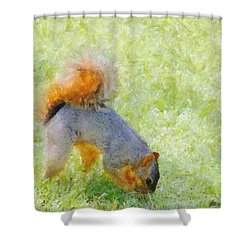 Squirrelly Shower Curtain by Jeff Kolker