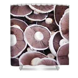 Stacked Mushrooms Shower Curtain by Jorgo Photography - Wall Art Gallery