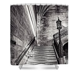 Stairs Of The Past Shower Curtain by CJ Schmit