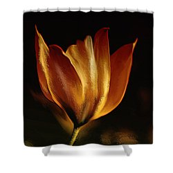 Stand Alone Shower Curtain by Elaine Manley