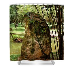 Standing Stone With Fern And Bamboo 19a Shower Curtain by Gerry Gantt
