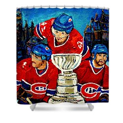 Stanley Cup Win In Sight Playoffs   2010 Shower Curtain by Carole Spandau