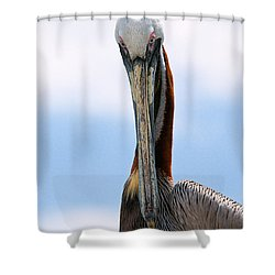 Stare Down Shower Curtain by Christopher Holmes