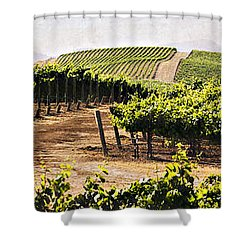 Step Into My Vineyard Shower Curtain by Marilyn Hunt