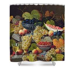 Still Life Of Melon Plums Grapes Cherries Strawberries On Stone Ledge Shower Curtain by Severin Roesen