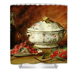 Still Life With A Soup Tureen Shower Curtain by Guillaume Romain Fouace