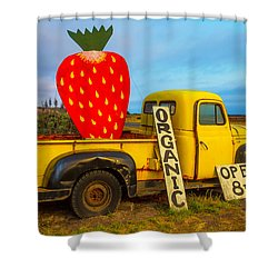 Strawberry Sign In Pickup Truck Shower Curtain by Garry Gay