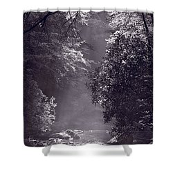 Stream Light B W Shower Curtain by Steve Gadomski