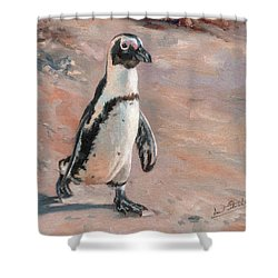 Stroll Along The Beach Shower Curtain by David Stribbling