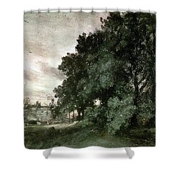 Study Of Trees Shower Curtain by John Constable