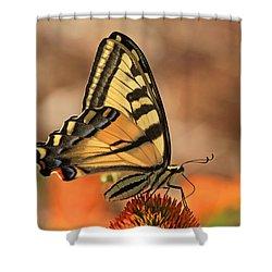 Summer Portrait Shower Curtain by Donna Kennedy