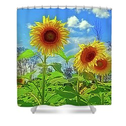 Shower Curtain featuring the photograph Sunflower Field by Rodney Campbell