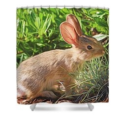 Sunny Bunny Shower Curtain by Donna Kennedy