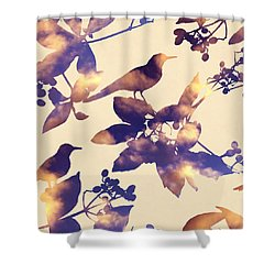 Sunset Birds Shower Curtain by Varpu Kronholm