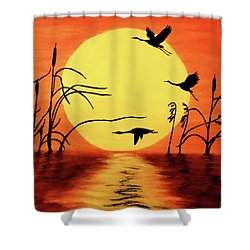 Sunset Geese Shower Curtain by Teresa Wing