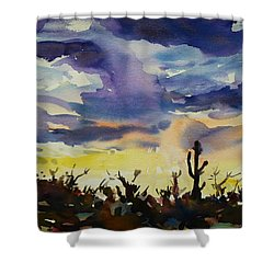 Sunset Sonora Shower Curtain by Xueling Zou