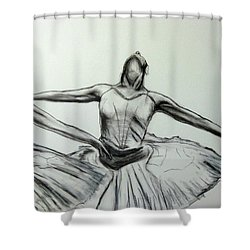 Swans Shower Curtain by James Gallagher