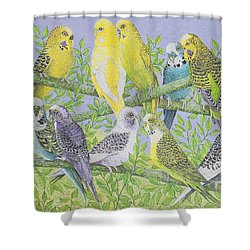 Sweet Talking Shower Curtain by Pat Scott
