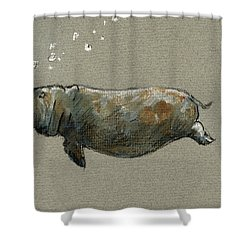 Swimming Hippo Shower Curtain by Juan  Bosco