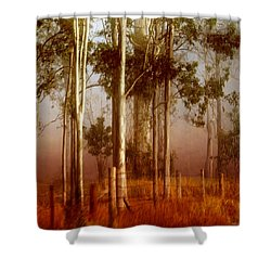 Tall Timbers Shower Curtain by Holly Kempe