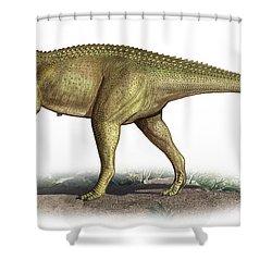 Tarascosaurus Salluvicus, A Prehistoric Shower Curtain by Sergey Krasovskiy