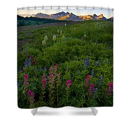 Tatoosh Dawn Shower Curtain by Mike  Dawson