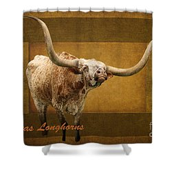 Texas Longhorns Photograph by Ella Kaye Dickey