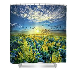 That Voices Never Shared Shower Curtain by Phil Koch