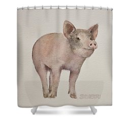 That's Some Pig Shower Curtain by Teresa Silvestri