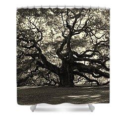 The Angel Oak Shower Curtain by Susanne Van Hulst