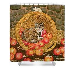 The Basket Mouse Shower Curtain by Ditz