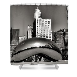 The Bean - 3 Shower Curtain by Ely Arsha