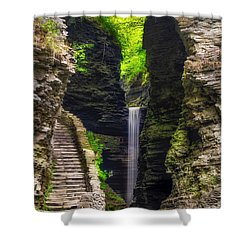 The Central Cascade Shower Curtain by Mark Papke
