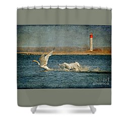 The Chase Is On Shower Curtain by Lois Bryan